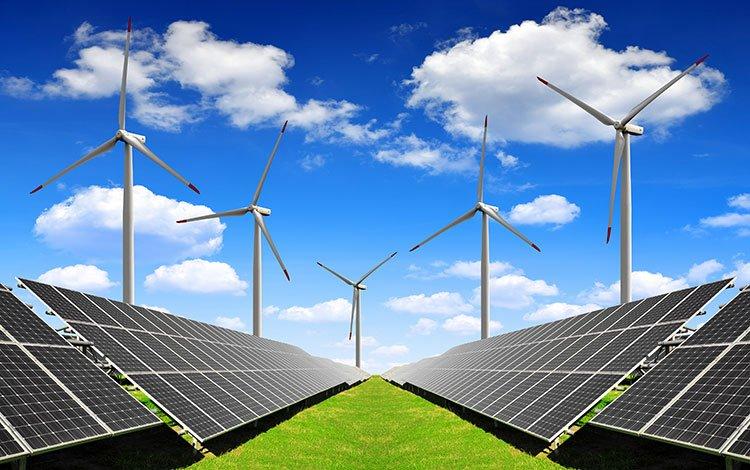 bioenergy_gallery.jpg
